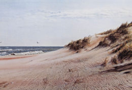 Jean Carter Kimble's Pastel Art